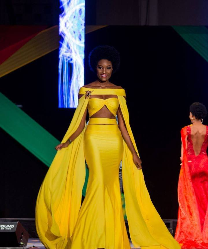 Miss Jamaica represented more than just an island last night
